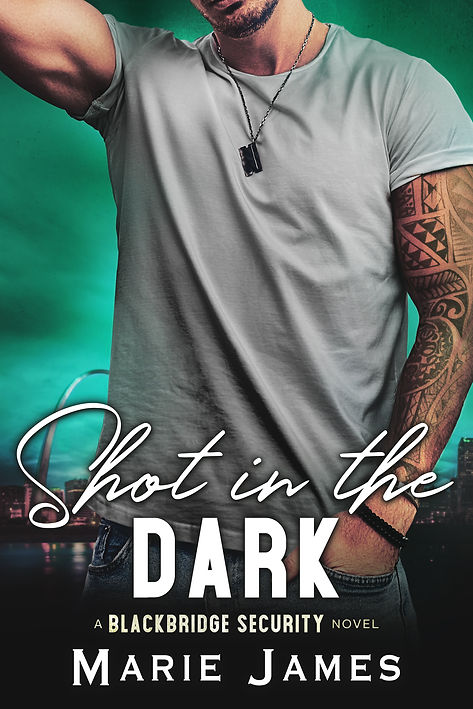 ShotintheDark_Ebook.jpg