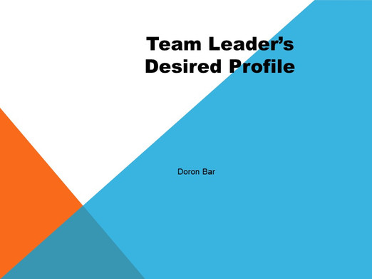 Testing Team Leaders profile and performance assessment