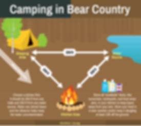 whister bear smart bears safety tips wildlife