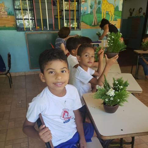 Escola Goias 1.jpeg