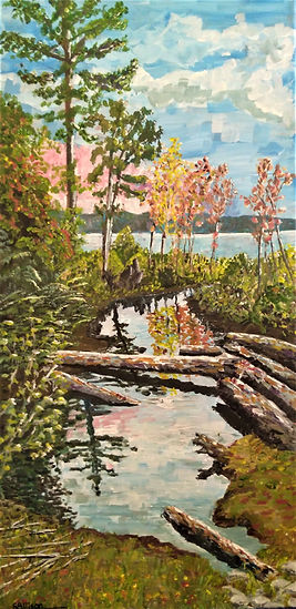 Reflections - Lake Superior - July 2019