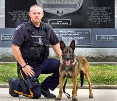 K9 Unit and handler 005.jpg