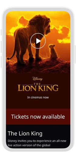 RCS LION KING