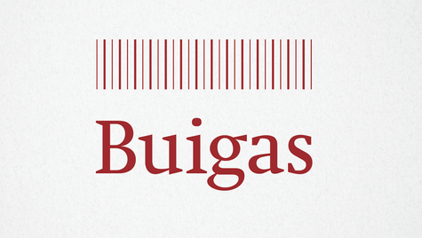 BUIGAS Final logo colour-01.png
