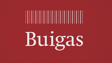 BUIGAS Final logo colour-02.png