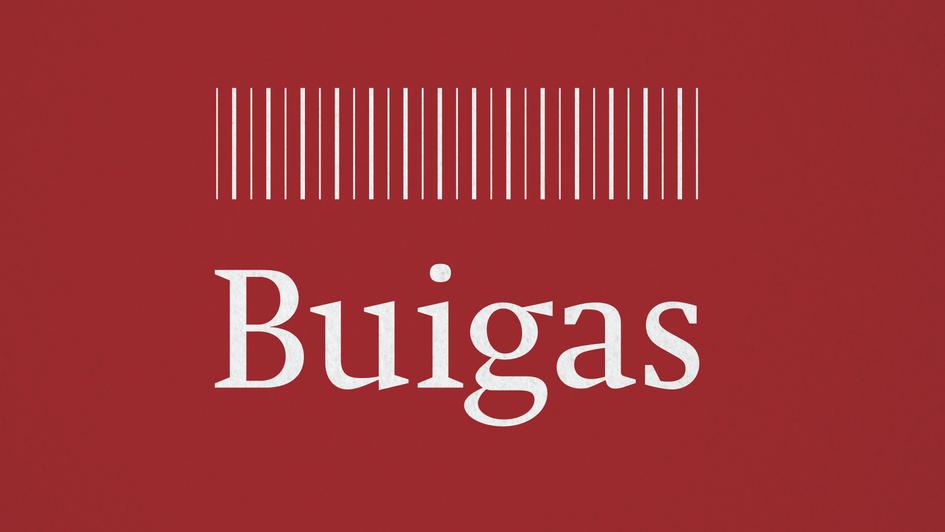 BUIGAS Final logo colour-02.png