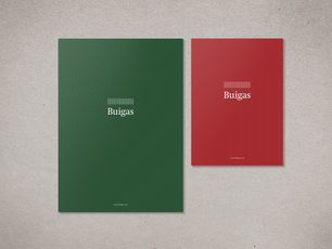 Buigas notebooks.png