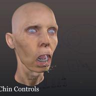 Advanced Facial Rig