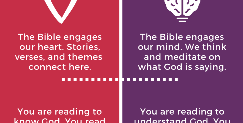 Reading the Bible Infographic