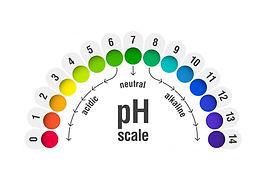 ph_1.jpg