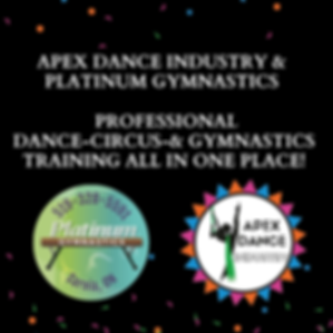 APEX DANCE INDUSTRY IS LEVELING UP-2.png
