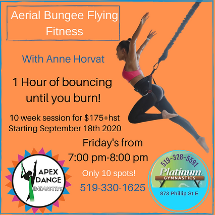 Aerial Bungee Fitness-2.png