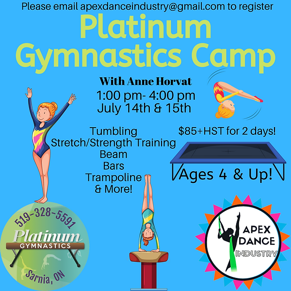 Platinum Gymnastics Camp.png