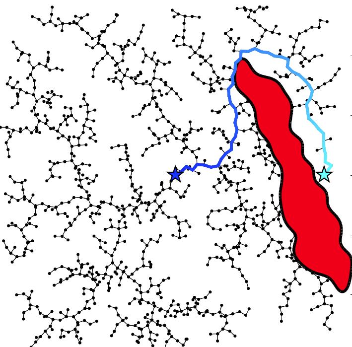 Collision Detection Models
