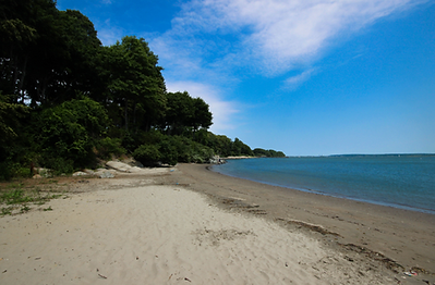 sandypointbeach.png