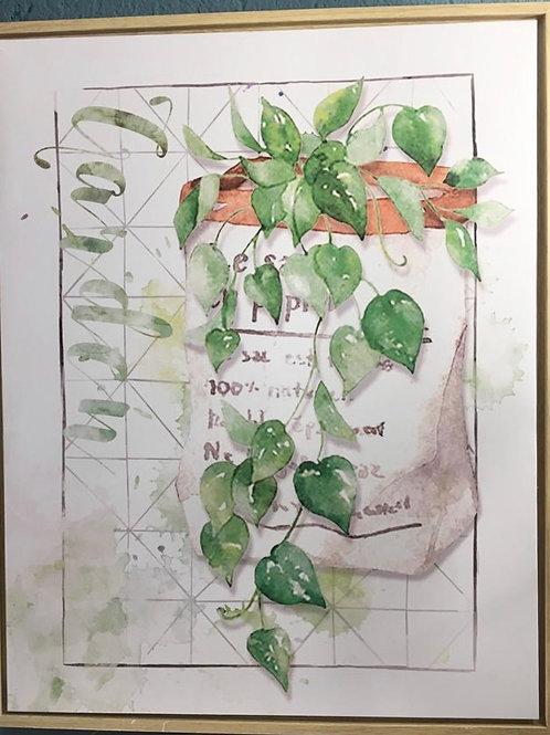 Cuadro botanico