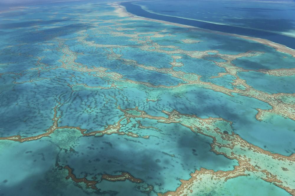 great-barrier-reef-queensland.jpg