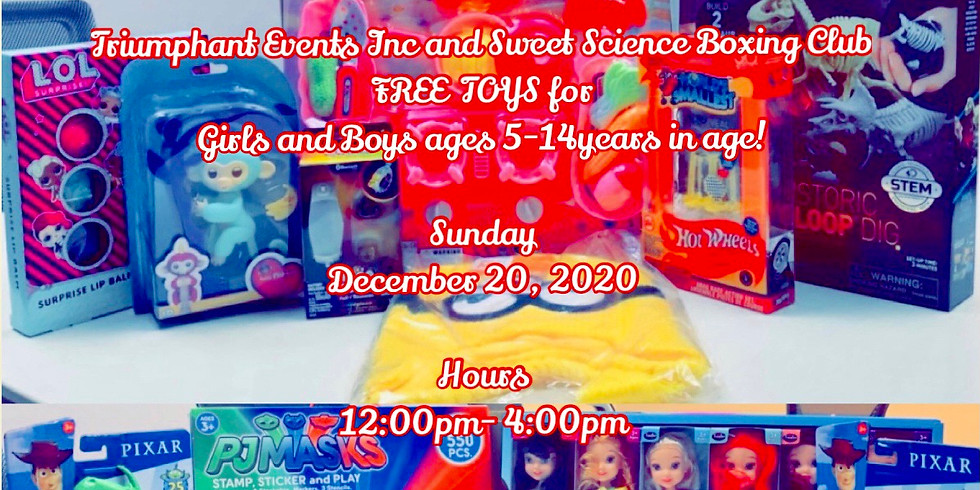 Sweet Science Boxing Club Free Toy Giveaway