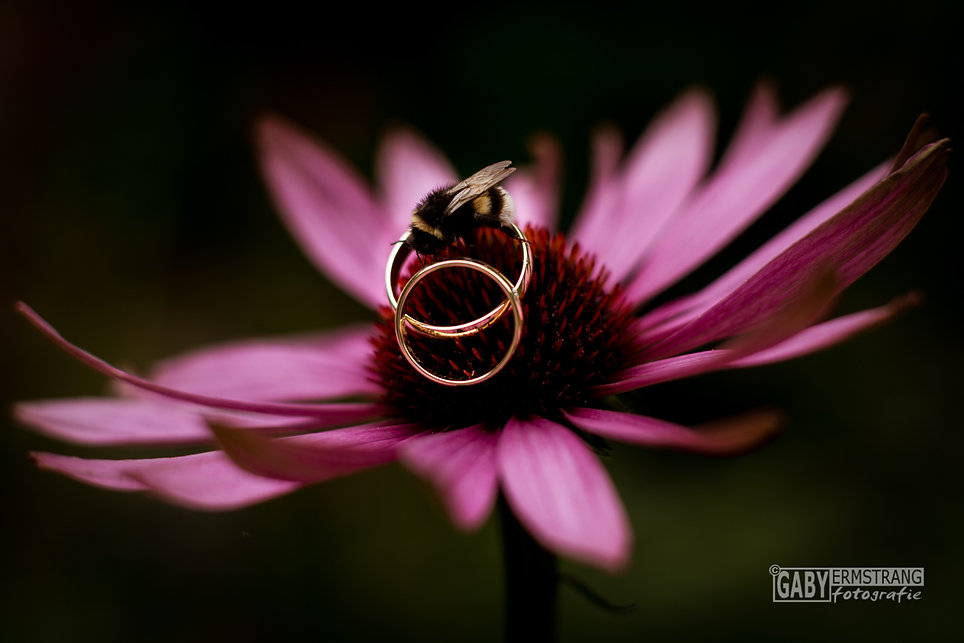 Bruidsfotografie Ens Flevoland Bruiloft trouwfotograaf Gaby Ermstrang fotografie Noord Brabant Utrec