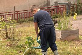 jardinage (14).NEF