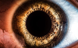 Yesterday, myself and Reece Jones spent the night trying to take macro shots of our eyes