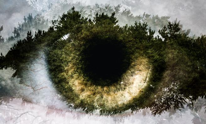 Multi Exposure - Eyes