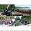 Thumbnail: FZN150-S Inyectada