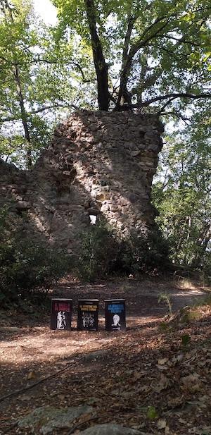 Rovine dell'antica prigione di Adelaide di Borgogna, sulla Rocca di Garda