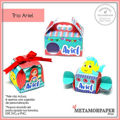 Trio Ariel