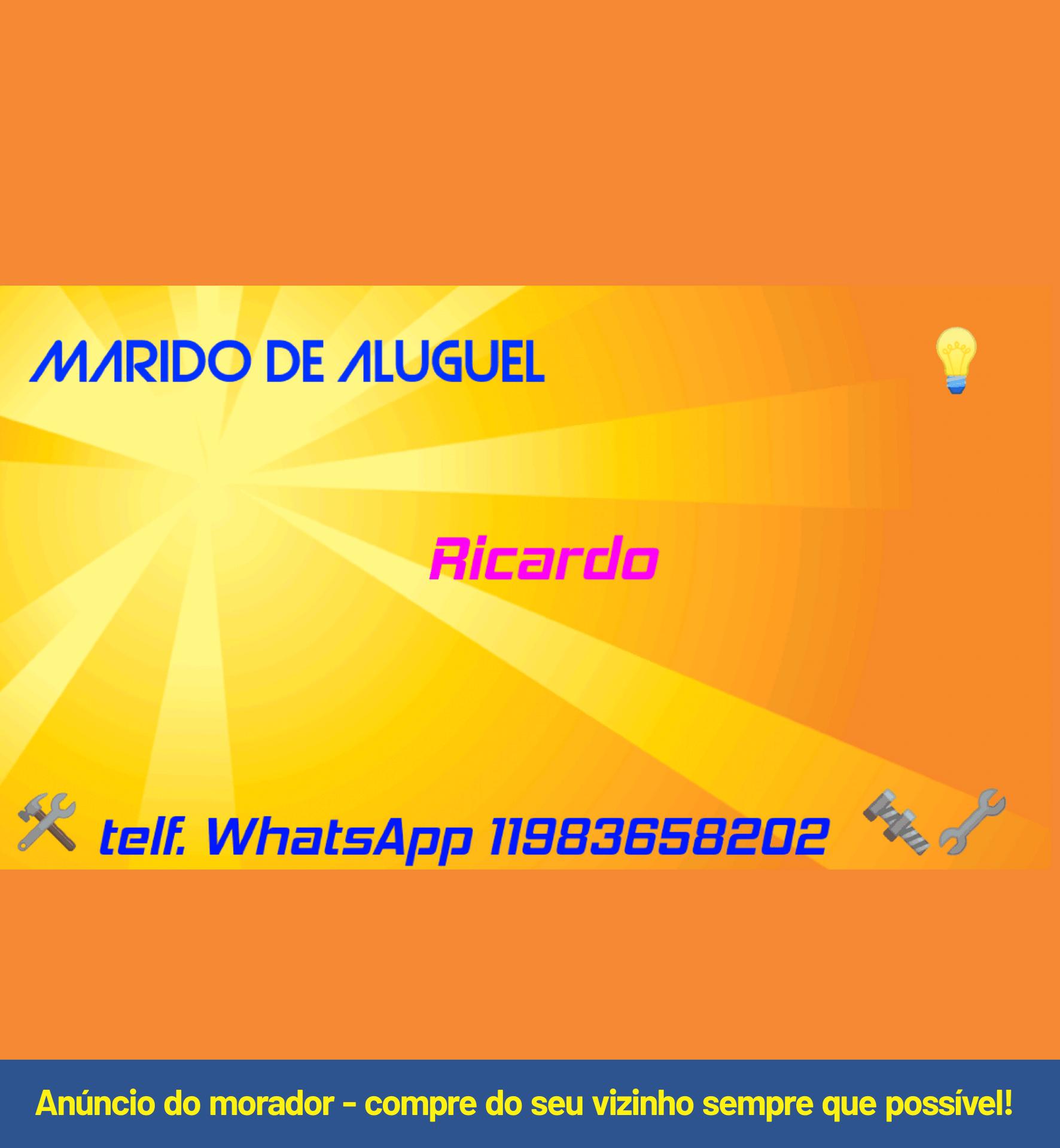 MARIDO DE ALUGUEL - Ricardo.png