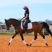 When life gets heavy, I trot it out.....