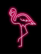 mingo neon.jpg