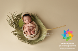 newborn photo award