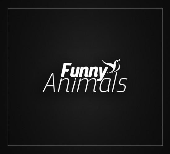 Funny Animals - Safari Akvaryum