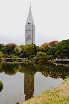 新宿御苑 docomoタワー