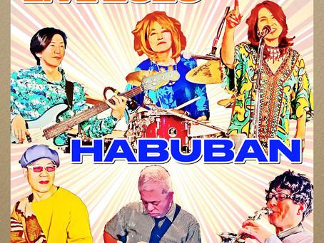 HABUBAN LIVE CD販売 配信開始しました!