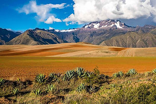 Bolivia_INCAmmino1-compressed-1200x800.j