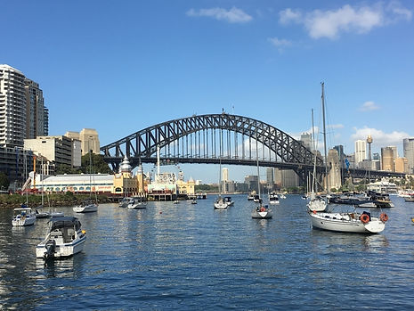 Sydney_Harbour_-_Richard_Mackay.jpg