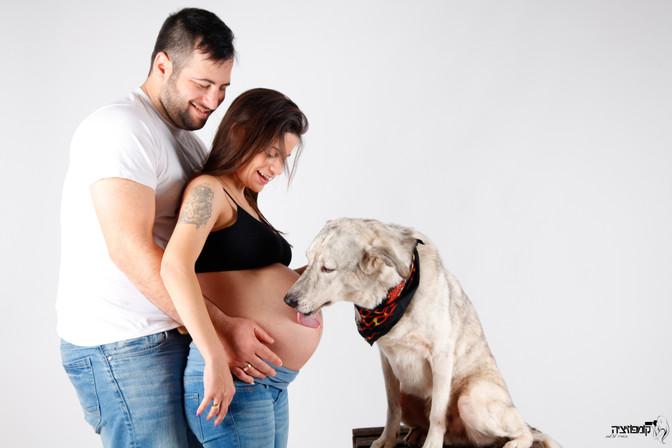 צילומי הריון עם חיית מחמד ..