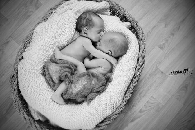 טובות השתיים - צילומי ניובורן לתאומים בסטודיו