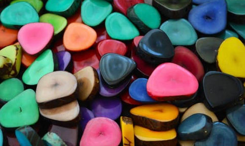 colored slices of Vegetable ivory / tagua