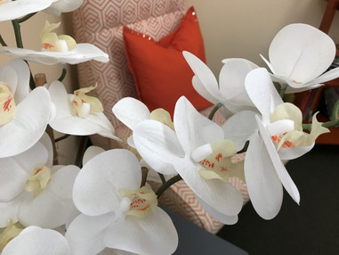 OrchidChairSusie.jpg