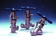 valve, Watergates nz, Auma actuator