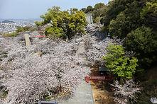 紀三井寺7.jpg