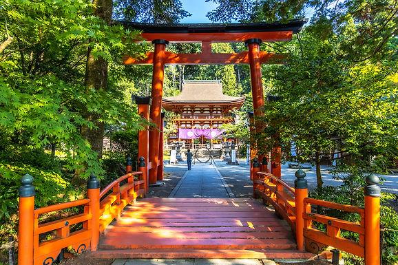 ナイトツアーも楽しめる、高野山1泊2日の旅