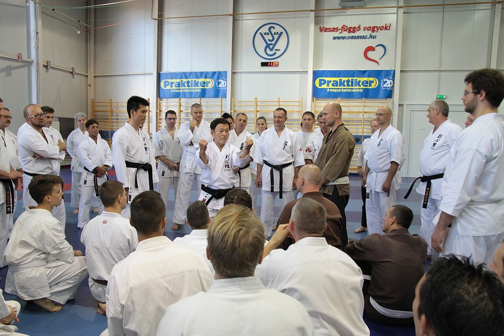 Teaching is about showing, Ushiro Sensei explaining how martial arts should be through traditional kata