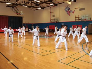2017 Seattle Karate Seminar Report