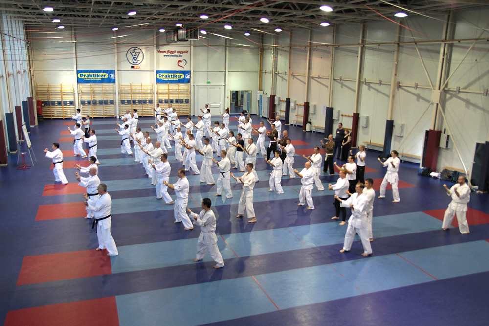 Sanchin kata with the entire group