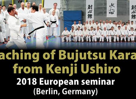 Video of Ushiro Sensei's overseas seminars available through Vimeo