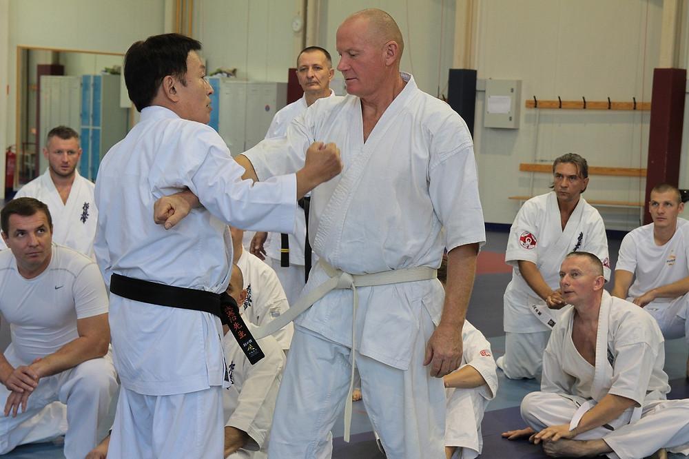 Ushiro Sensei demonstrating to each participant